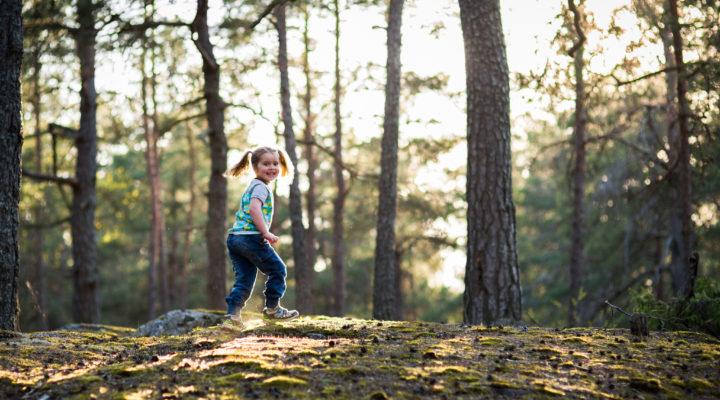 family photographer stockholm